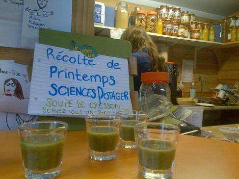 Soupe de cresson proposées gratuitement à CAFèS après la récolte